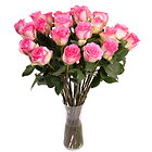 Roses�rose � longues tiges
