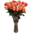Roses orange � longues tiges