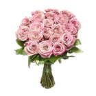 Roses�rose��tiges courtes