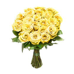 Yellow short stem roses