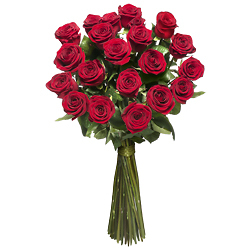 12 Red long stemmed roses