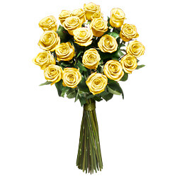 12 Yellow long stemmed roses