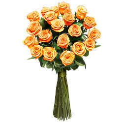12 Orange long stemmed roses