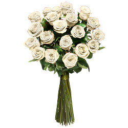 12 White long stemmed roses