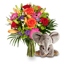 Celebration with ��Arthur�the elephant��