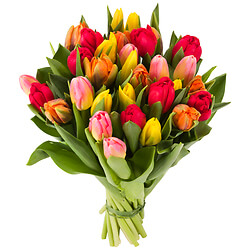 Bouquet Tulipes multicolores