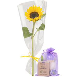 Single sunflower with gift bag
