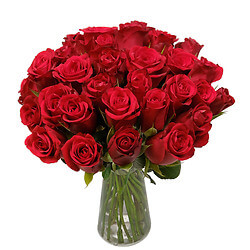 Roses bouquet 'Red Velvet'