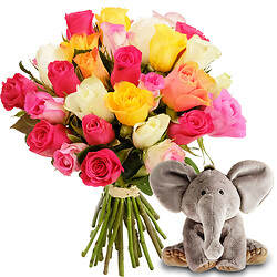 Surprise with Elephant plush