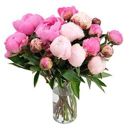 Livraison de fleurs domicile bouquet de fleurs fleuriste for Offrir des fleurs a domicile