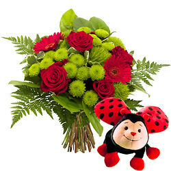 Bouquet Spark with Ladybug